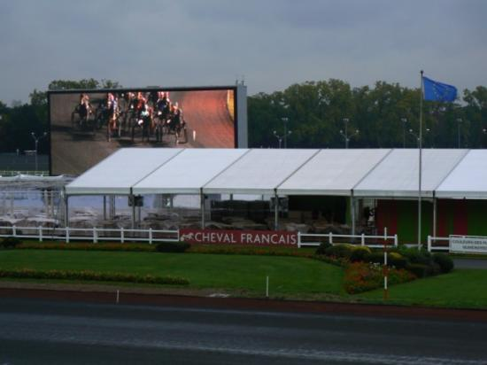 Dîner spectacle à l'hippodrome de Vincennes (3)