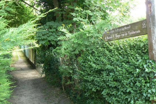 Rando vallée de la Bièvre 30.05.2015 (5)