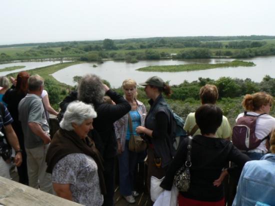 Sortie en baie de Somme (21)